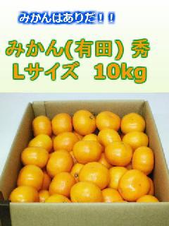 みかん(有田) 秀 Lサイズ 10kg