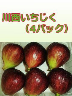 川西いちじく (4パック)