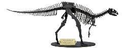 フクイサウルス【越前和紙】