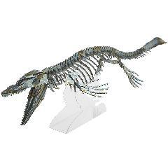 <越前和紙>モササウルス(台座付)<緑>