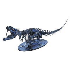 <越前和紙>NEWティラノサウルス-C<藍>
