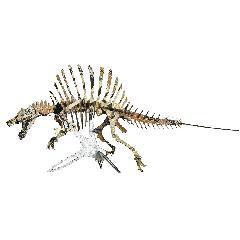 <越前和紙>NEWスピノサウルス<黄土>
