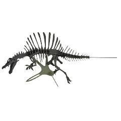 NEW-スピノサウルス(台座付)<ブラック>