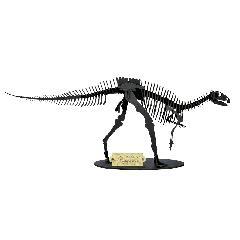 フクイサウルス【ブラック】
