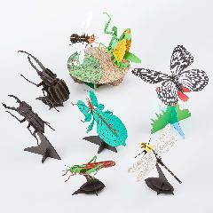 昆虫5000円セット