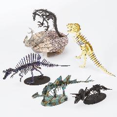 恐竜5000円セット