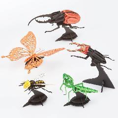 昆虫3000円セット
