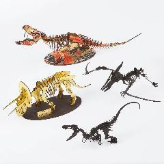 恐竜3000円セット