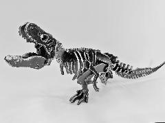 【アイアンオブジェ】ティラノサウルス