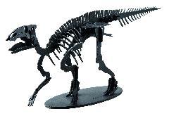 ハドロサウルス