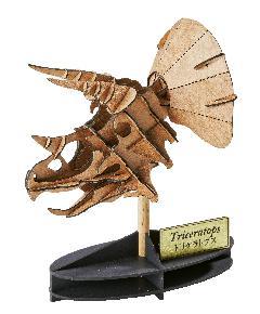 トリケラトプス(頭骨)