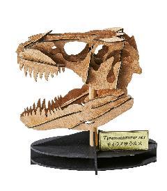 ティラノサウルス(頭骨)