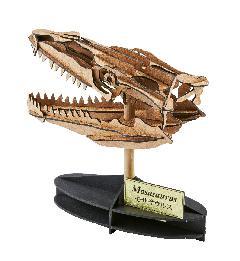 モササウルス(頭骨)