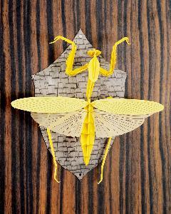 <昆虫標本>カマキリ(イエロー) 壁掛けタイプ
