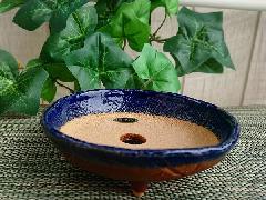 【信楽焼 植木鉢】ルリ丸足付皿 3.5号 9071-13
