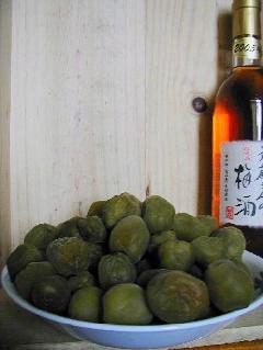 """文蔵さんの梅酒 """"梅の実"""""""
