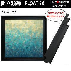 仮縁(組立前) S10サイズ(530×530mm) フロート30 黒色 ブラック