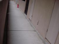 マンションの廊下です。