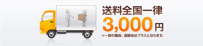送料全国一律3000円