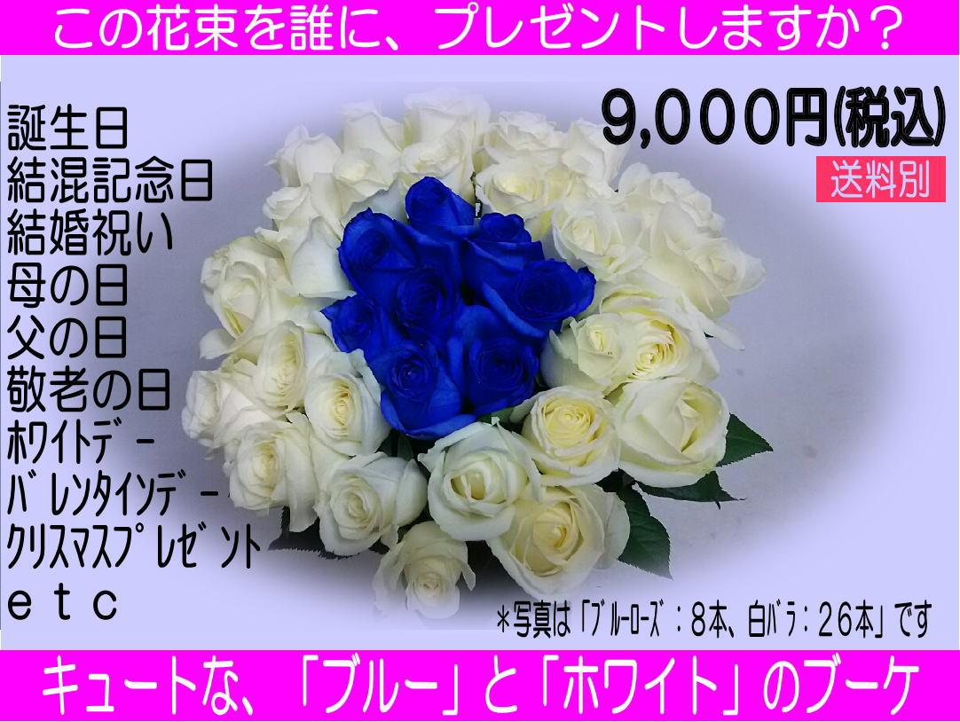 34本のバラの花束「ブルー&ホワイト」