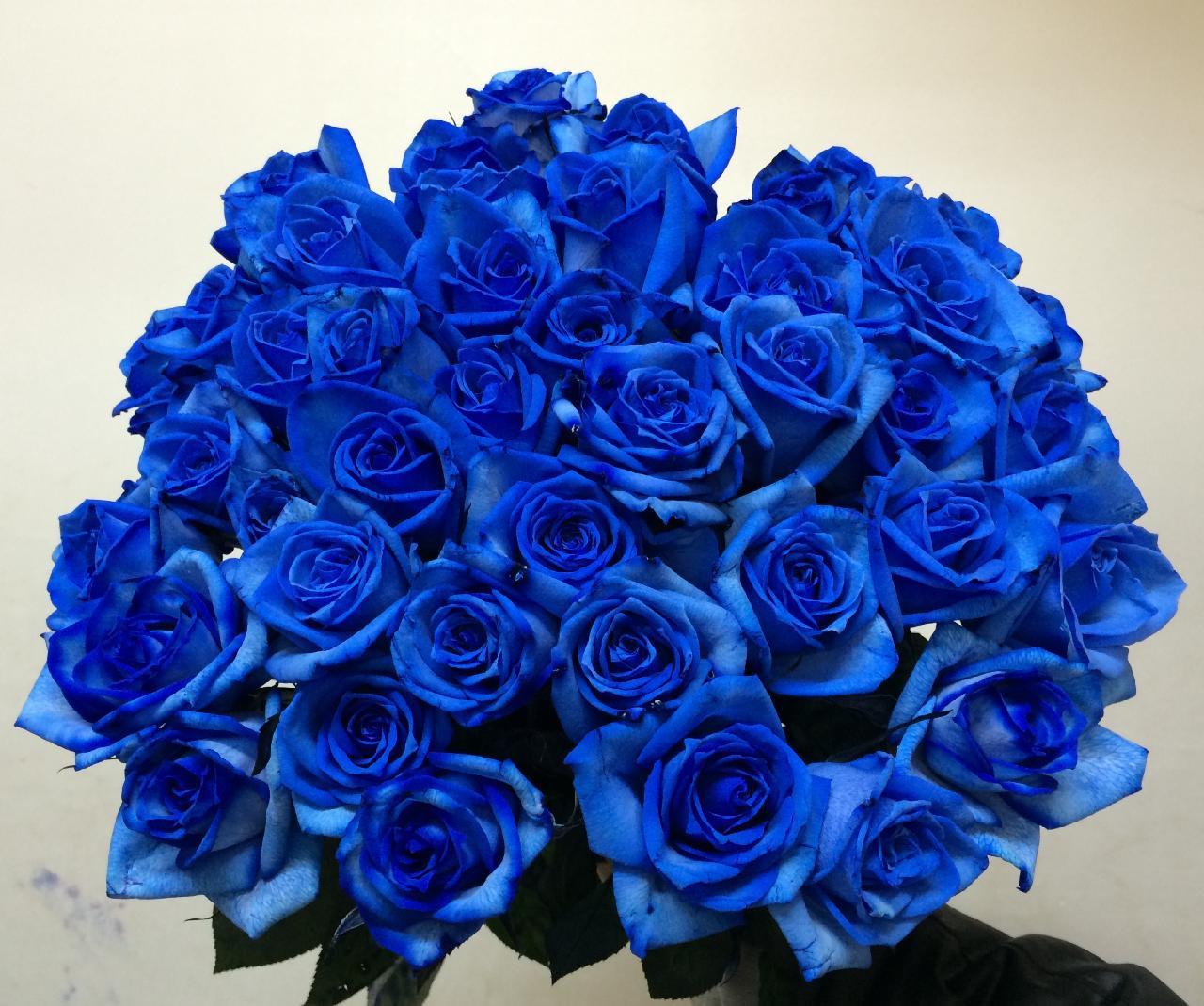 50本のバラの花束「ブルー」