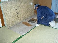 東京葛飾区 一般家庭 ネズミ防除