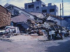 阪神大震災の家の倒壊の原因はシロアリだ!!