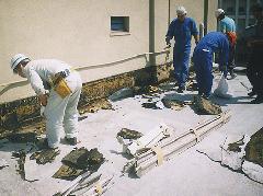 大型コンクリート造り倉庫屋上のイエシロアリ駆除写真