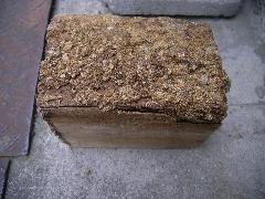 床下に落ちていた廃材のシロアリ被害写真