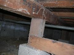 鉄筋コンクリート建て居宅のヤマトシロアリ駆除