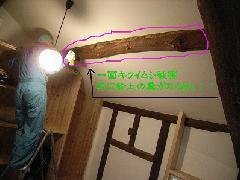 キクイムシ被害画像 害虫駆除 茨木市