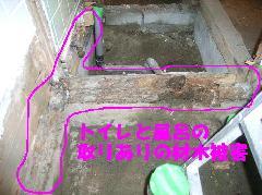 トイレ、風呂場の土台のシロアリ被害状況写真