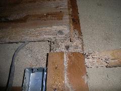 奈良県白蟻対策 改築で和室シロアリ被害写真