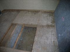 ヤマトシロアリのタタミ裏側被害写真