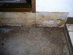 イエシロアリのマンションフローリング被害写真