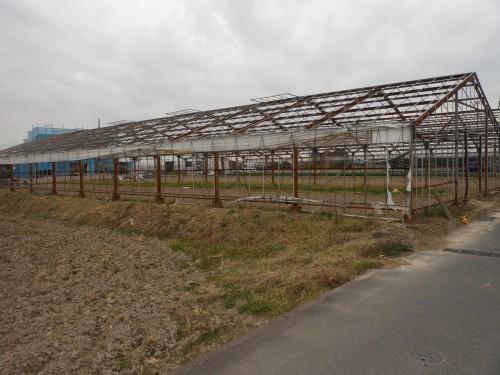 稲沢市鉄骨造ビニールハウス解体工事