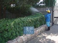 薬剤散布・庭の清掃