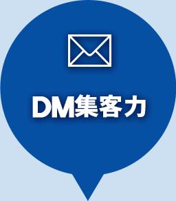 DM集客力