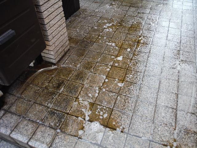 杉並区永福 マンション 床面洗浄