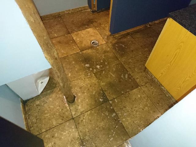 飲食店 トイレ床面 剥離作業
