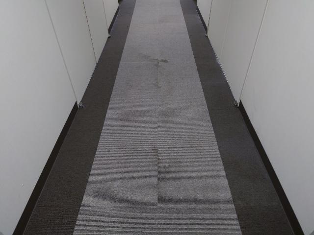 杉並区内マンション カーペット清掃