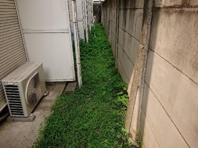 杉並区内アパート 共用部除草