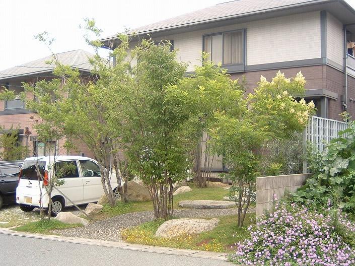 和田の植物と石