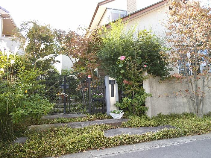 津島福居の塀と植物