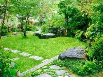 小島地の沖縄芝生と西洋ニンジンボク