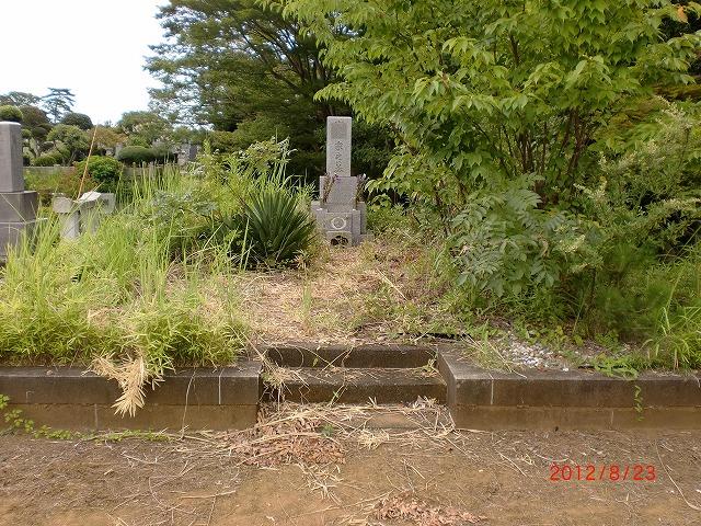 八柱霊園 植木手入 雑草手入