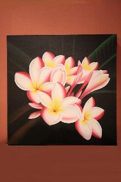 プルメリア (アートパネル、アート絵画、ハンドメイド) ピンク