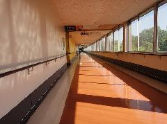 埼玉県 所沢市 病院医療施設 日常清掃  廊下