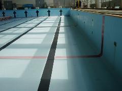 埼玉県 所沢市 運動スポーツ施設 プール清掃