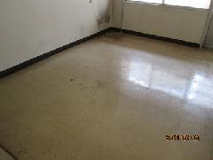 病室床面 定期洗浄